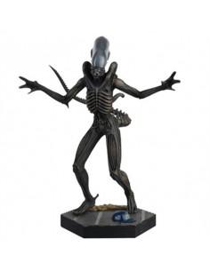 Xenomorph. Alien & Predator